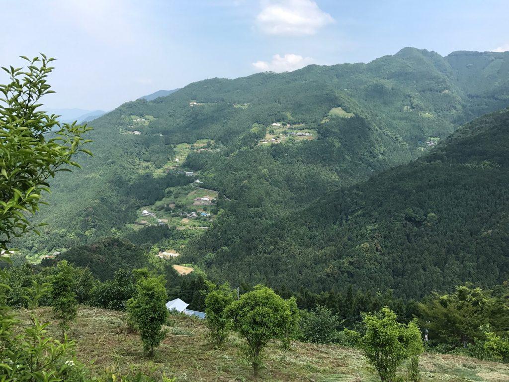 自然豊かな地で自然と調和した生活を実現した友人を訪ねる